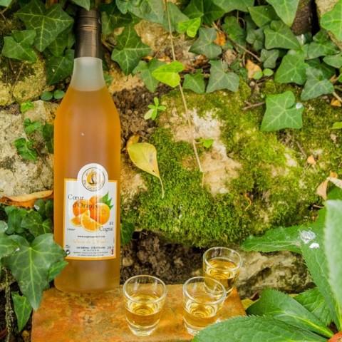 Orange au Cognac