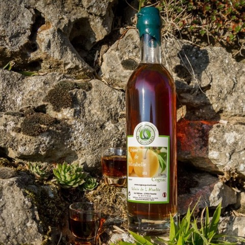 Crème de Mirabelle au Cognac